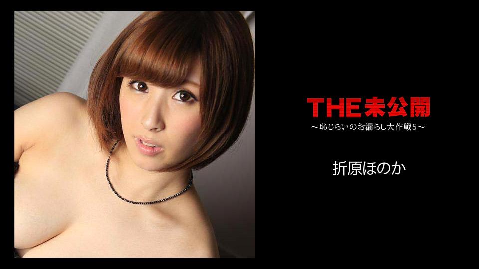 THE 未公開 〜恥じらいのお漏らし大作戦5〜